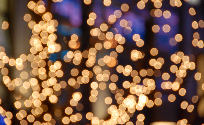Evening Treelights Bokeh